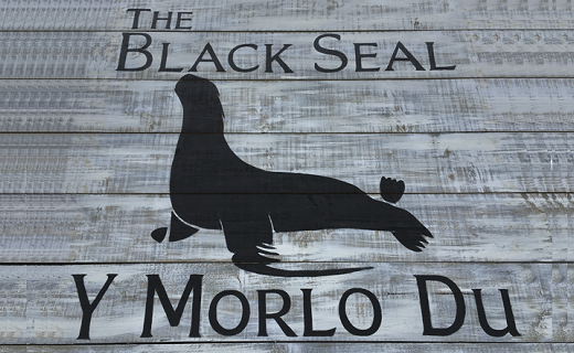 The Black Seal