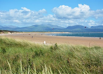 Newborough beach over the Marram grass