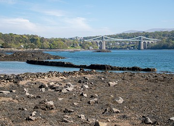 One of the stone wall fish traps on the shores of the Menai STrait