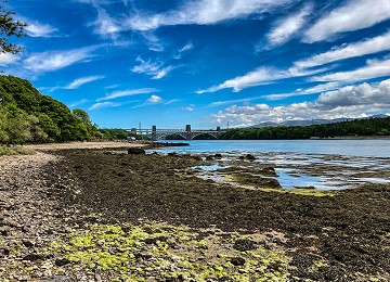 Pwllfanogl beach and Britannia bridge in background